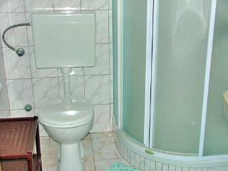 Apartments and Rooms Stjepan - 31771-A3 - Zastrazisce vacation rentals
