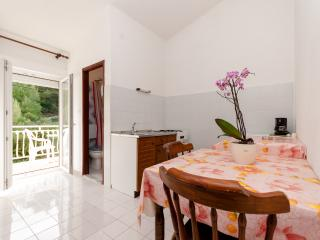Apartments Roza - 31861-A1 - Duce vacation rentals