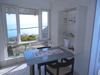 Apartments Sonja - 31901-A2 - Igrane vacation rentals