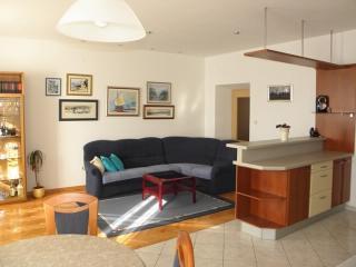Apartment Asja - 38451-A1 - Postira vacation rentals