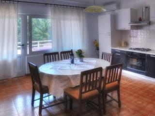 Apartment Maroević - 40151-A4 - Stari Grad vacation rentals
