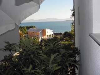 Apartments Joze - 41021-A2 - Zivogosce vacation rentals