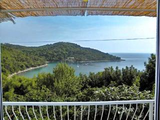 Apartments Pavla - 51841-A1 - Saplunara vacation rentals