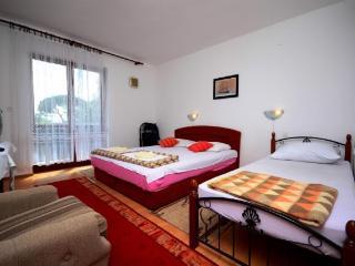 Apartments Smilja - 52921-A1 - Racisce vacation rentals