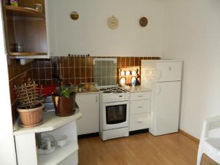 Apartments Štefka - 63191-A1 - Novi Vinodolski vacation rentals