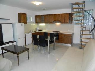 House Dušan - 65201-K1 - Icici vacation rentals