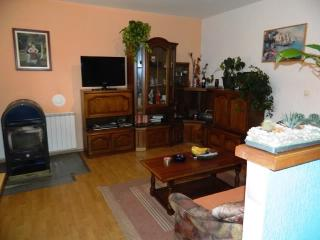 Apartments Rajka - 65301-A4 - Kampor vacation rentals
