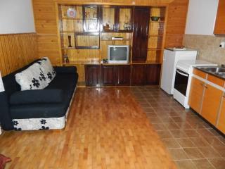 Apartments Tome - 65971-A1 - Senj vacation rentals