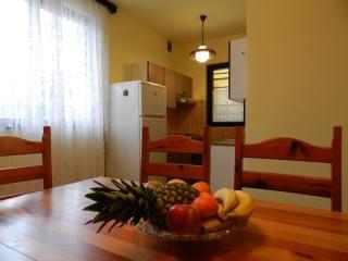 Apartments Dragutin - 70501-A1 - Premantura vacation rentals