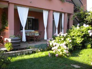 Apartments Tajana - 73221-A6 - Novigrad vacation rentals