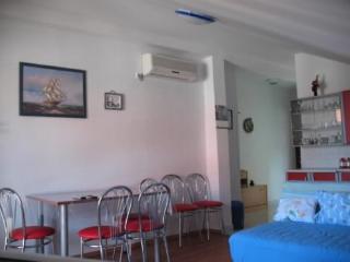 Apartments Šime - 21611-A1 - Petrcane vacation rentals