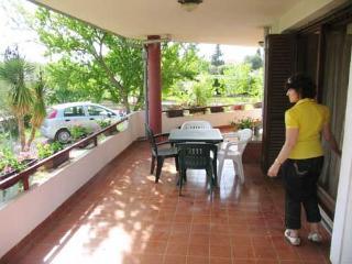 Apartments Mirjana - 22471-A1 - Ugljan vacation rentals