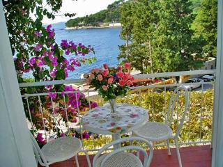 Apartment Ksenija - 32561-A1 - Zivogosce vacation rentals