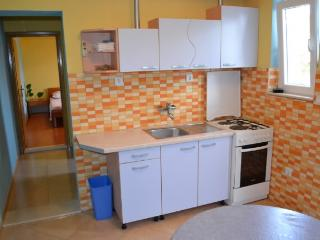 Apartments Ante - 38921-A1 - Skrip vacation rentals