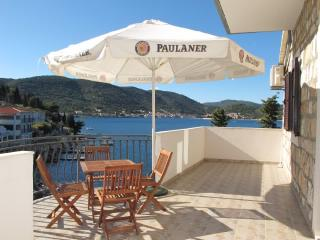 Apartments Ivanka - 40901-A1 - Milna (Vis) vacation rentals