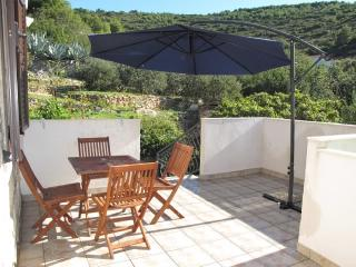 Apartments Ivanka - 40901-A3 - Milna (Vis) vacation rentals