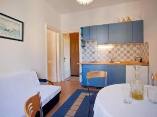 Apartments Petar - 41821-A2 - Island Vis vacation rentals