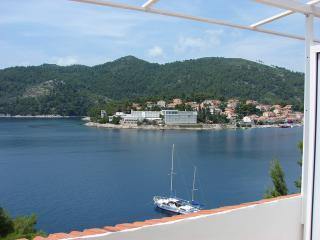 Apartments Marija - 50961-A3 - Brna vacation rentals