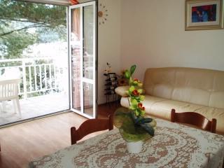 Apartments Dalibor - 52581-A2 - Brna vacation rentals