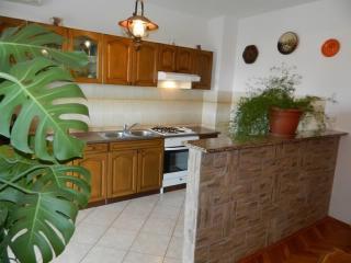 Apartments Štefka - 65821-A3 - Selce vacation rentals