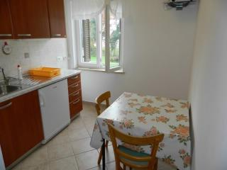 Apartments Anita - 67041-A1 - Nerezine vacation rentals