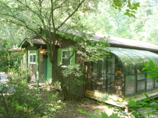 Luxury Cabin/Forest/Creek/Hot Tub/FP/Kid Friendly! - Asheville vacation rentals