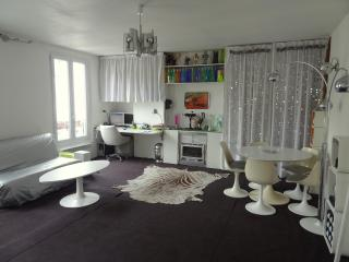 Entire apartment in central Paris - Paris vacation rentals