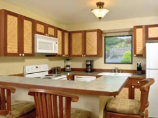 2 bedroom Condo with Internet Access in Kailua-Kona - Kailua-Kona vacation rentals