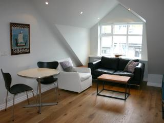 Attic apartment with great view in center - Reykjavik vacation rentals