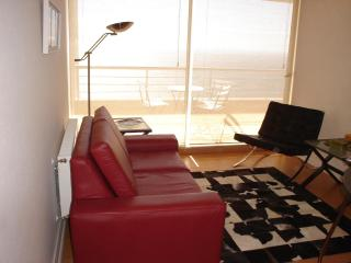 Comfortable 1 bedroom Condo in Renaca with Internet Access - Renaca vacation rentals