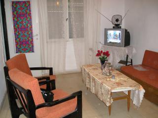 Mountain Road Guest House-  so close to Bahai Gardens - Haifa vacation rentals