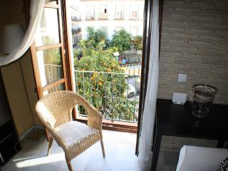 PRETTY NICE MORAVIA APARTMENT SEVILLE CENTER - Seville vacation rentals