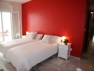 WONDERFUL AND SPACIOUS APARTMENT, NEAR THE RIVER - Seville vacation rentals