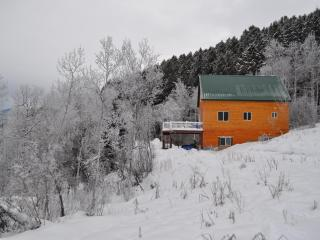 3BD/2BTH cabin (Optional wifi) - Freedom vacation rentals