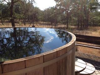 Retreat on Ten Acres - Lyle vacation rentals