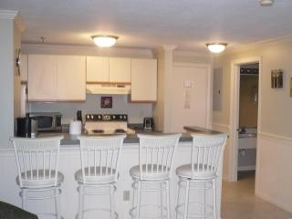 Beautiful Studio  Fully furnished near Weirs Beach - Gilford vacation rentals