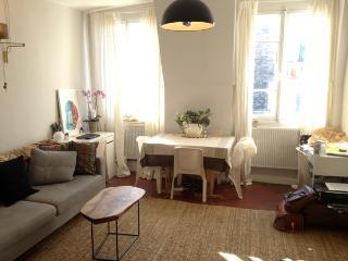 Nice Paris Apartment in Charming Marais Quarter - Paris vacation rentals