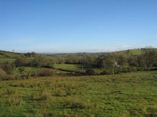 New Large Irish Country Home on Acre of Farmland - Bailieborough vacation rentals