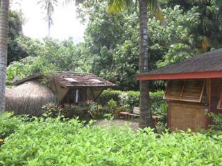 Fare Fetia - Maharepa vacation rentals