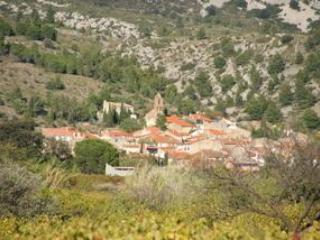 Village view - Stone French Winemakers House - Saint-Jean-de-Barrou - rentals