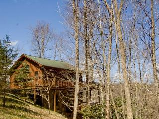 Holaday Haven - Long Range Views, 17 acres of Privacy, Hiking Trails and More - Piney Creek vacation rentals