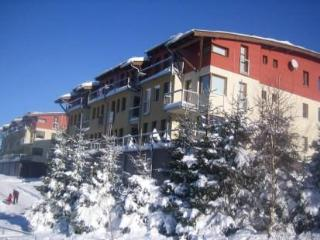 Appartment House Keilberg - Abertamy vacation rentals