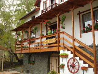 Nice Villa with Outdoor Dining Area and Television - Baia de Fier vacation rentals