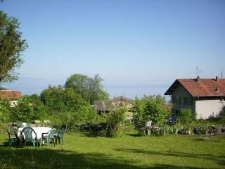 Charming 2 bedroom Évian-les-Bains House with Internet Access - Évian-les-Bains vacation rentals