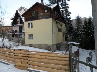 The perfect place to be one with nature  - Sinaia - Sinaia vacation rentals