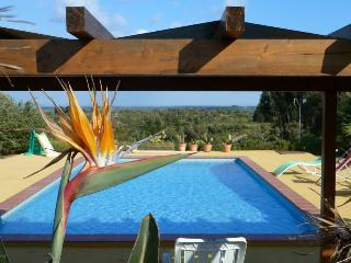 Casa Mimosa Silence in the middle of nature, close to the beach - Santiago do Cacem vacation rentals