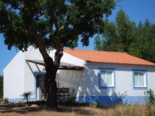 Casa Sobreiro, Luxury in the middle of nature - Centro Region vacation rentals