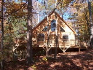 Hawks Nest - Hot Tub, 2 Queen Beds, 2 bathrooms lovely private and peaceful - Candler vacation rentals