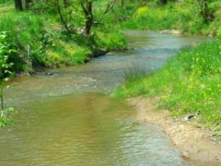 Dancing Waters – Relaxing on a Creek, Nicely Furnished Country Cottage, Game Room & Fire Pit - Candler vacation rentals