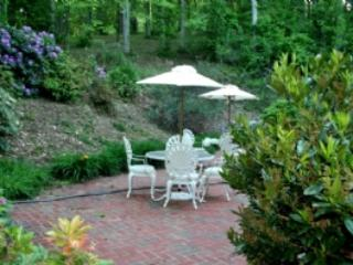 Patio Area - Celebration Vacation Home - Minutes to downtown Asheville and Biltmore Estate - Asheville - rentals